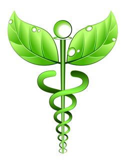 naravna alternativa za zdravje